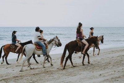 Esportes com cavalos despertam fascínio entre as pessoas